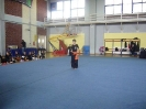 2nd_fjp_cup_2014_32