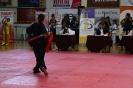 palamidio_championship_2014_150
