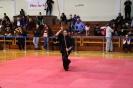 palamidio_championship_2014_171