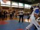 palamidio_championship_2014_27