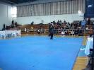 palamidio_championship_2014_8