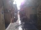 fu_jow_seminar_syros_2014_6