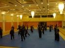 martial_arts_seminar_2014_11
