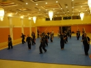 martial_arts_seminar_2014_13