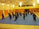martial_arts_seminar_2014_17