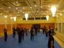 martial_arts_seminar_2014_18