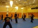 martial_arts_seminar_2014_19
