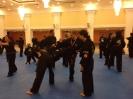 martial_arts_seminar_2014_1
