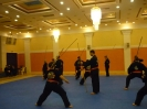 martial_arts_seminar_2014_20