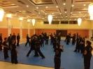 martial_arts_seminar_2014_23