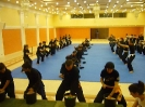 martial_arts_seminar_2014_24