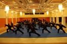 martial_arts_seminar_2014_45