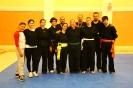 martial_arts_seminar_2014_47