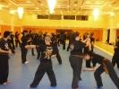 martial_arts_seminar_2014_4