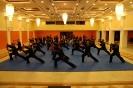 martial_arts_seminar_2014_56