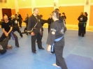 martial_arts_seminar_2014_6