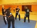 martial_arts_seminar_2014_7