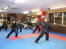 weapon_training_19