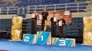 23rd Panhellenic Fu Jow Pai Championship_10