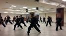 Martial arts seminar 2016_12