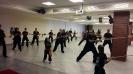 Martial arts seminar 2016_14