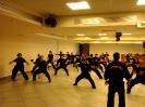 Martial arts seminar 2016_31