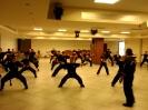 Martial arts seminar 2016_32