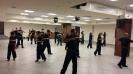 Martial arts seminar 2016_6