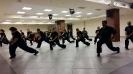 Martial arts seminar 2016_8