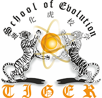Evolution Tiger School - Martial Arts school - Fu Jow Pai Kung Fu